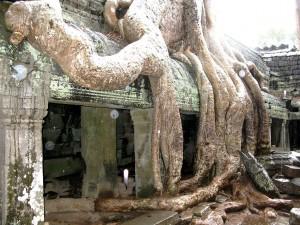 temples of Angkor UTA