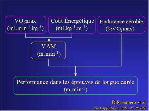 VMA - DiPrampero et Al
